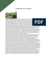 Kerusakan Lingkungan Akibat Pertanian Konvensional