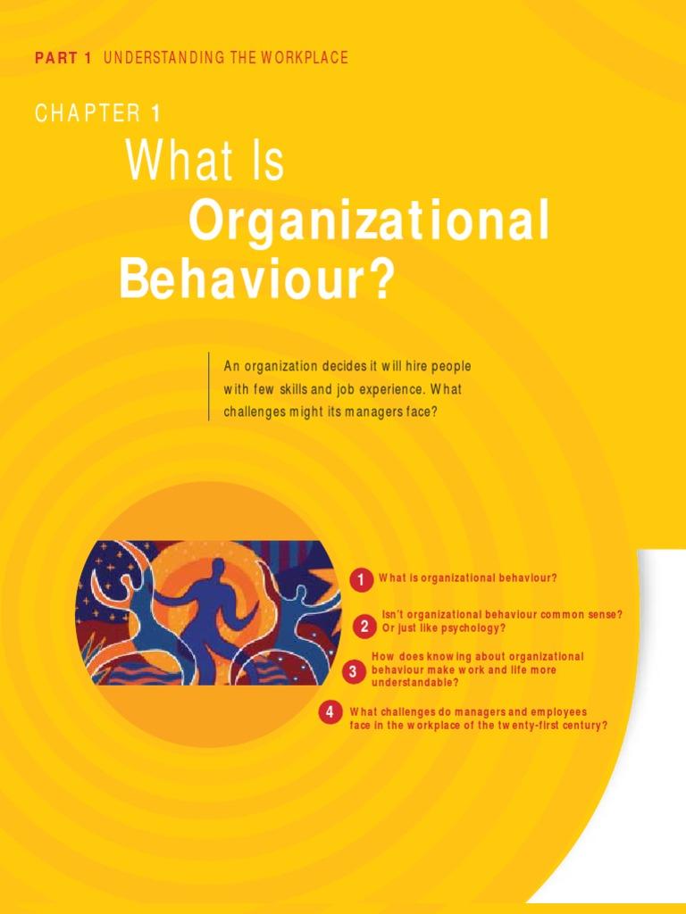 Fundamentals Of Organizational Behaviour