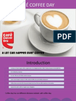 raw ccd ppt