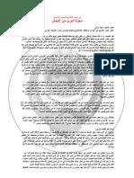 محبة العرب من الإيمان- السفير محمد والي
