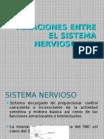 Relacion Sistema Nervioso - Endocrino