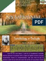 Sociobiologia