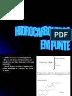 Hidrocarbonetos Em Ponte, Espiranos e Terpénicos