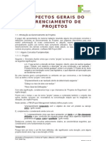 Capitulo 1 - Aspectos Gerais Do Gerenciamento de Projetos