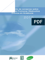 Consenso_EPOC_Andalucia_2010