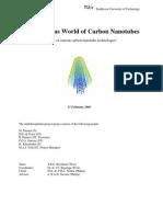 Wondrous World of Carbon Nanotubes