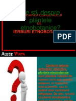 0_ierburi