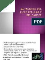 Mutaciones del Ciclo Celular y del cáncer