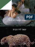 נשים זקוקות ל-4 חיות