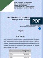 Apresentação de MGV