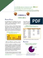 Informe 2 Cebolla 2007