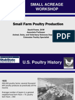Small Flock Poultry