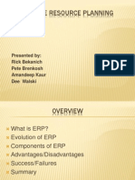 what is erp 6