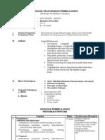 RPP Basis Data Access