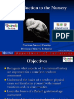 Newborn Introduction