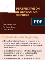 Biofuel Policy Perspectives - Presentation at 2G Biofuels Workshop, Kemausuor