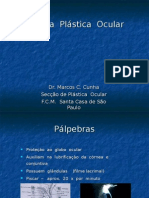 Aula 03 - Plastica Ocular 2
