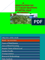 Supply Chain of Betel