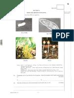 2005 Biology Paper1