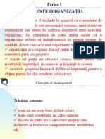ORGANIZATIA Concepte de Management (1)
