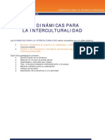 dinamicas_interculturalidad