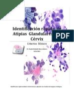 Identificación rápida  de  Atipias  Glandulares  del  Cérvix