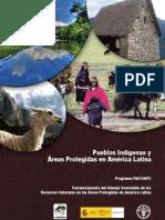 Pueblos Indígenas y Áreas Protegidas en América Latina