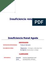 99 L56 Insuficiencia Renal