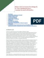 Arqueologia, história e sócio-economia da restinga da Lagoa Dos Patos. Uma contribuição para o conhecimento e manejo da reserva da biosfera