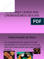 A HERANÇA DOS CROMOSSOMOS SEXUAIS