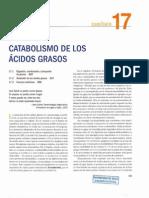 Catabolismo de ácidos grasos