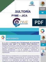 CONSULTORIA_PYME_JICA_2009_2