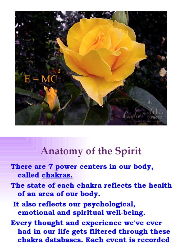 Anatomy Of The Spirit Chakra Mind