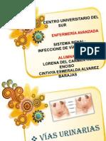 Inf. de Vías Urinarias