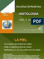 Histologia de La Piel
