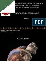 CORAZON CORAZONDE POLLO