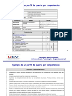 Ejemplo II Perfil Por Competencias