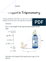 Project in Trigonometry