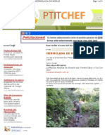 Www.petitchef.es Recetas Mermelada de Moras Fid 328205