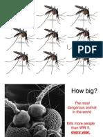 MALARIA - Integrated Teaching