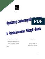 Monografie primaria Filipesti