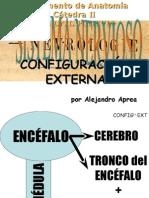 Clase Introductoria Al TP34 Configuración Externa Medular y Encefálica