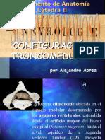 Clase Introductoria Al TP35 Configuración Troncomedular
