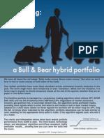 A Bull and Bear Hybrid Portfolio