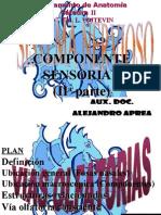 Clase Introductoria Al TP43 Vías Olfatorias