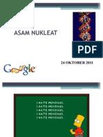 ASAM NUKLEAT-1