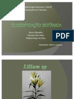 Trabalho Farmacobotânica - Classificação botânica