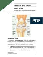 Artroscopia No Xeonllo