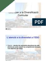 L'atenció a la diversitat a l'ESO