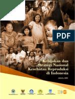 Kebijakan Strategi Nasional Kesehatan Reproduksi Di Indonesia
